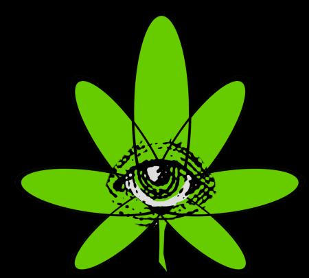 hemp-eye